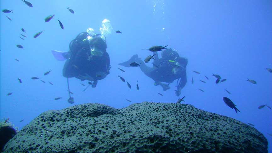 PADI Open Water Diver with Latchi Dive Centre, Paphos, Cyprus