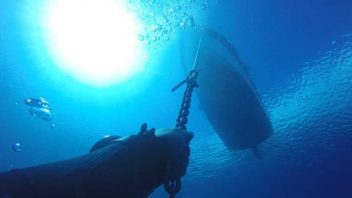 Daily Dive Trips