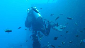 Zenobia Wreck Diving with Latchi Dive Centre, Cyprus