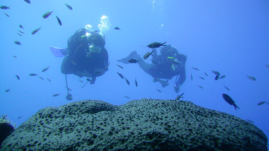 The PADI Open Water Diver course is the world's most popular scuba course. Latchi Dive Centre