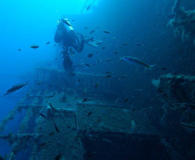 PADI Wreck Diver Specialty Course at Latchi Dive Centre in Cyprus